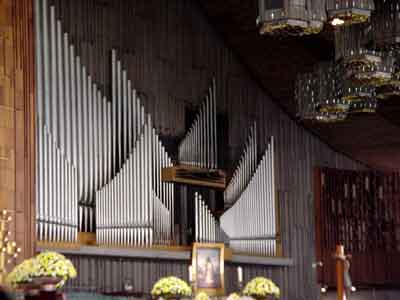Organo Basilica